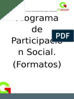Formatos 2016-2017 Participación Social