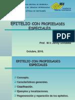 TEJIDO EPITELIAL Con Propiedades Especiales1