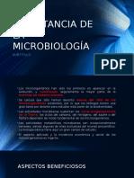 Importancia de La Microbiología