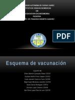 esquema-de-vacunacion (1).pptx