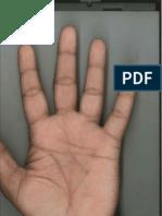 L. HAND PRINT.pdf