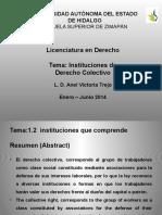 Instituciones de Derecho Colectivo