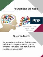 Control neuromotor del habla.pptx