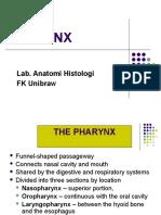3 - Kulliah Pharynx 2012