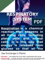 RESPIRATORY SYSTEM.pptx