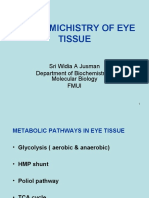 Biochemistry of the Eye