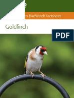 goldf_01_2012_low_res.pdf