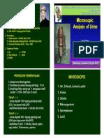 Microscopic Urine Final