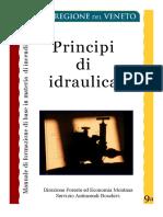 principiidraulicaA5.pdf