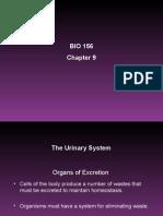 BIO 156 Chapter 9 Powerpoint