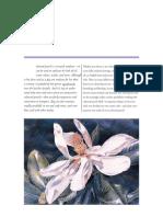 colour pencil.pdf