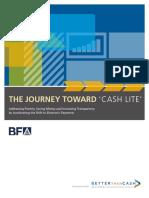ePayment Primer == The Journey Towards CashLite
