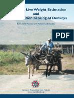 Condition Scoring Donkeys