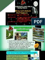 AMBIENTAL naturales protegidas.pdf