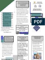 El+TRIP.+DISC.+INTE.O6.pdf