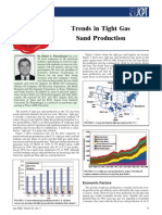 PETSOC-02-07-DAS Wattenbarger, R.a. Trends in Tight Gas Sand Production