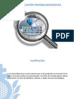 Puntos claves en la Identificacion muestras biológicas.pdf
