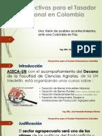 Perspectivas Para El Tasador Profesional en Colombia
