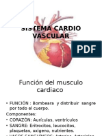 Sítema Cardio Vascular