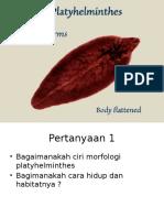 Platyhelminthes.pptx