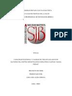 antecedentes y marco teorico recoleccion de datos terminado-alida 27 11 16 final (Autoguardado).pdf