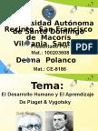 Psi 255.pptx