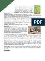 Animals in India.docx
