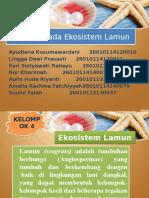 Kelompok 4 Bioekologi Moluska Ekosistem Lamun