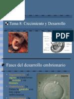 8_desarrollo_embrionario