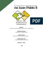Informe - Pimentel