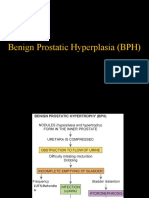 BPH-LECTURE.pptx