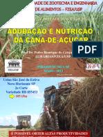 148609103 Nutricao e Adubacao Da Cana Mai13