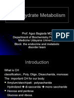 Carbohydrate Metabolism - Copy