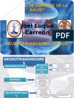 Neurotransmisores Del Snc... Dina 1