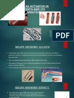 Micro Nano Project (1)