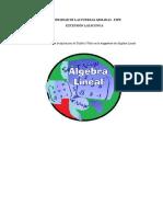 Guia Metodologica de La Utilizacion de Scilb y Wiris en Algbera Lineal Iiiii