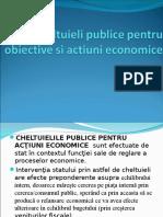 Cheltuieli Publice Pentru Obiective Si Actiuni Economice