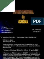 158500509 Ciuperci Comestibile Din Romania