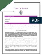 Ensayo (1000 palabras).pdf