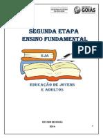 Organização Conteúdos II Etapa Finalizado