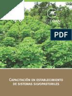 establecimientosistemassilvopatoriles.pdf