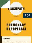 FlashPath - Lung - Pulmonary Hypoplasia