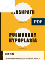 FlashPath - Lung - Pulmonary Hypoplasia