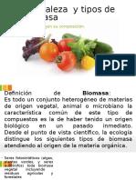 Naturaleza y Tipos de Biomasa