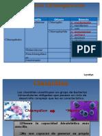 Infecciones Por Chlamydia FINAL (1)