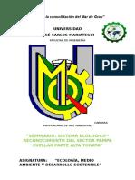 Informe Pampa Cuellar