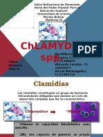 Infecciones Por Chlamydia FINAL