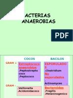 Bacterias Anaerobios