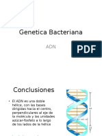Genetica_bacteriana_2009