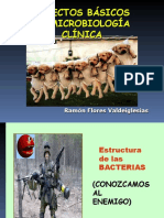 Microbiologia Clinica diapositivas